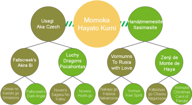 20200421_Pedigrees_Momoka