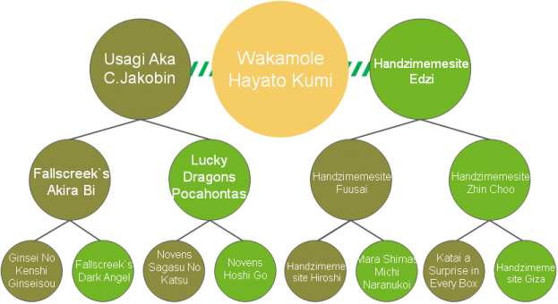20200421_Pedigrees_Wakamole
