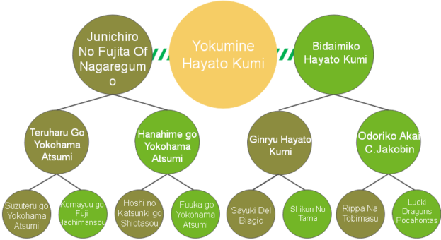 20200421_Pedigrees_Yokumine